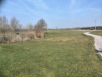 GC Kurpfalz - Kurpfalz (2).png